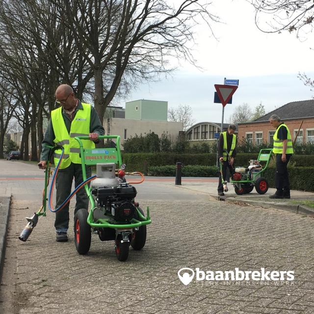 Een mix aan talenten gaat in de gemeente Heusden het onkruid zonder gif te lijf.